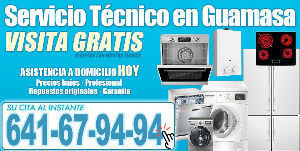 Servicio Técnico en Guamasa