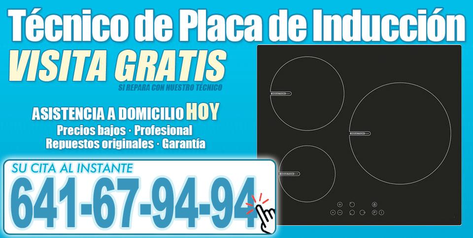 Técnico de Placa de Induccion en Tenerife